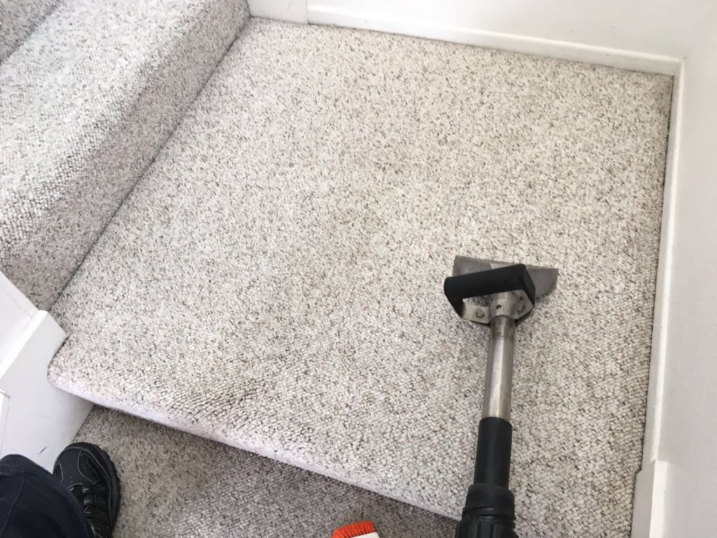 Home - Carpet Cleaning Irvine